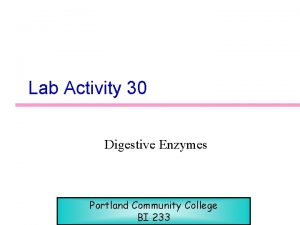 Lab Activity 30 Digestive Enzymes Portland Community College