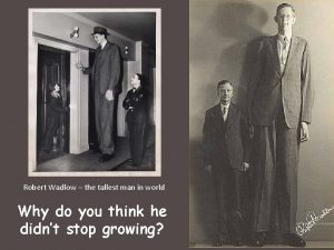 Robert Wadlow the tallest man in world Why