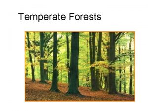 Temperate Forests Temperate forests are found primarily in