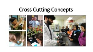 Cross Cutting Concepts Cross Cutting Concepts Speed Dating