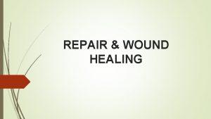REPAIR WOUND HEALING Repair Wound healing by primary