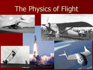 The Physics of Flight Myths and Legends of