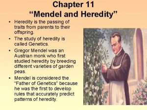 Chapter 11 Mendel and Heredity Heredity is the