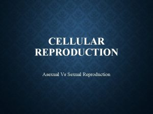 CELLULAR REPRODUCTION Asexual Vs Sexual Reproduction ASEXUAL REPRODUCTION