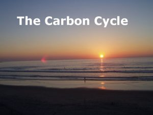 The Carbon Cycle Carbon Dioxide and Carbonate system