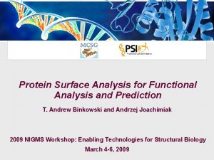 Protein Surface Analysis for Functional Analysis and Prediction