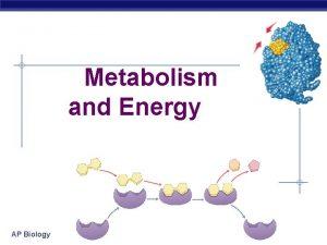 Metabolism and Energy AP Biology Metabolic reactions energy
