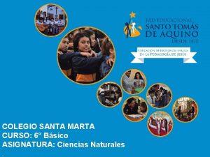 COLEGIO SANTA MARTA CURSO 6 Bsico ASIGNATURA Ciencias