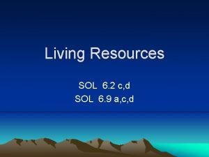 Living Resources SOL 6 2 c d SOL