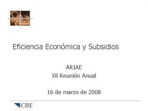 Eficiencia Econmica y Subsidios ARIAE Xll Reunin Anual