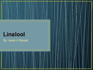 Linalool By Jason Raquel Whats truly important plus