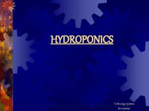 HYDROPONICS Technology Systems Mr Gembar Imagine Imagine harvesting