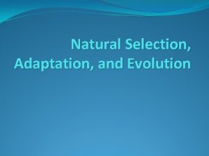 Natural Selection Adaptation and Evolution What is natural