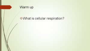 Warm up What is cellular respiration Cellular Respiration