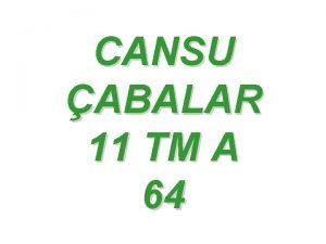 CANSU ABALAR 11 TM A 64 KARMAIK SAYILAR