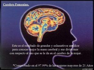 Cerebro Femenino Este es el resultado de grandes