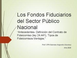 Los Fondos Fiduciarios del Sector Pblico Nacional Antecedentes
