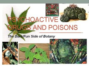 PSYCHOACTIVE DRUGS AND POISONS The DarkFun Side of