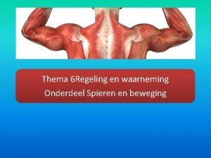 Thema 6 Regeling en waarneming Onderdeel Spieren en