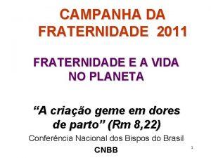 CAMPANHA DA FRATERNIDADE 2011 FRATERNIDADE E A VIDA