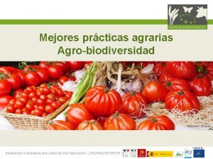 Mejores prcticas agrarias Agrobiodiversidad pictures pixabay Funded by