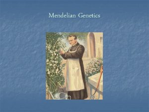 Mendelian Genetics Genetics the branch of Biology that