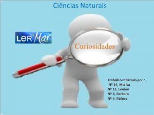 Cincias Naturais Curiosidades Trabalho realizado por N 14