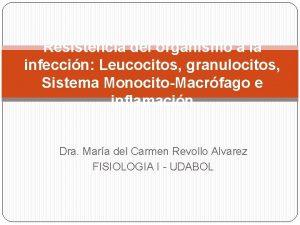 Resistencia del organismo a la infeccin Leucocitos granulocitos