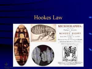 Hookes Law Robert Hooke 1635 1703 Researched and