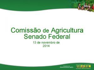 Comisso de Agricultura Senado Federal 13 de novembro