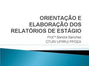 ORIENTAO E ELABORAO DOS RELATRIOS DE ESTGIO Prof