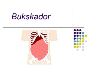 Bukskador Anatomi l bukhlan l retroperitoneum l lilla
