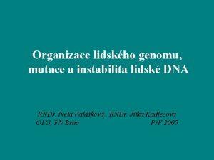 Organizace lidskho genomu mutace a instabilita lidsk DNA