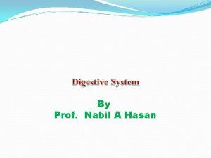 Digestive System By Prof Nabil A Hasan Organs