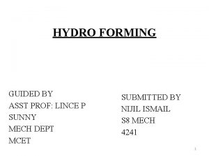 HYDRO FORMING GUIDED BY ASST PROF LINCE P