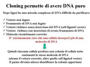 Cloning permette di avere DNA puro Dopo ligasi