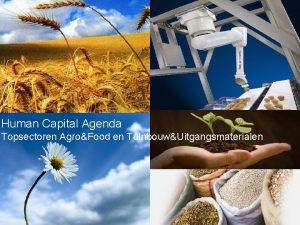 Human Capital Agenda Topsectoren AgroFood en TuinbouwUitgangsmaterialen Visie