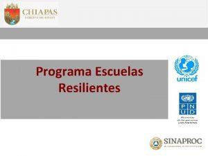 Programa Escuelas Resilientes 1 2 Resiliencia en la