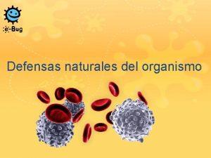 Defensas naturales del organismo Defensas naturales del organismo