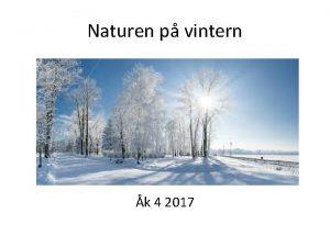 Naturen p vintern k 4 2017 Begrepp att