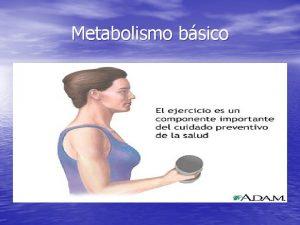 Metabolismo bsico El metabolismo basal es aquel conjunto