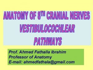 Prof Ahmed Fathalla Ibrahim Professor of Anatomy Email