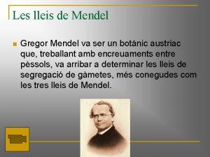 Les lleis de Mendel n Gregor Mendel va