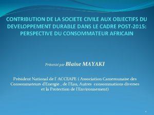 CONTRIBUTION DE LA SOCIETE CIVILE AUX OBJECTIFS DU