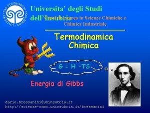 Universita degli Studi Corsi di Laurea in Scienze