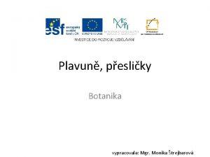 Plavun pesliky Botanika vypracovala Mgr Monika trejbarov Kapradiny