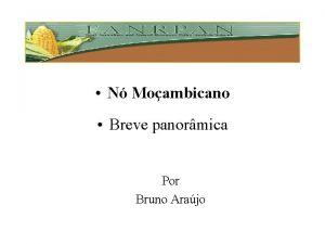 N Moambicano Breve panormica Por Bruno Arajo 1994
