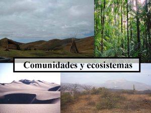 Comunidades y ecosistemas ECOLOGA Y MEDIO AMBIENTE El