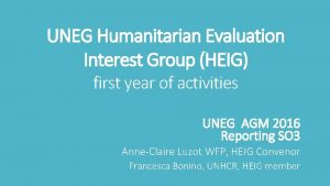 UNEG Humanitarian Evaluation Interest Group HEIG first year