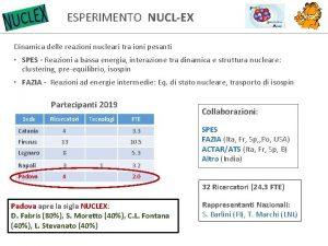 ESPERIMENTO NUCLEX Dinamica delle reazioni nucleari tra ioni